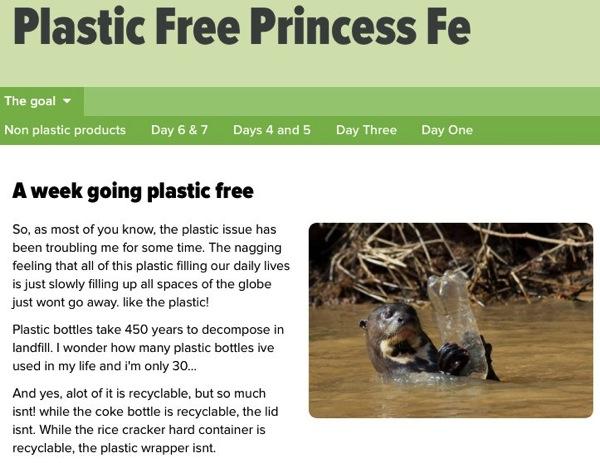 20141015 The goal  plasticfreeprincess simplesite com